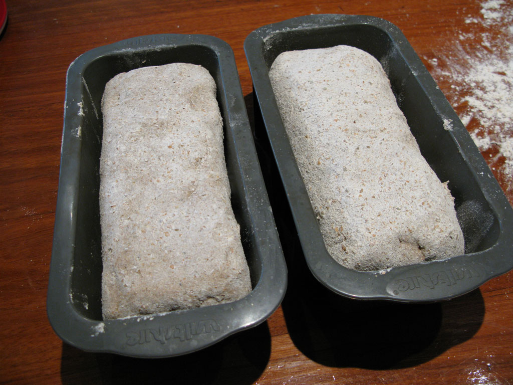 place dough in containers